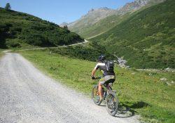 Stå godt fast på mountainbiken - så kan du køre alle steder